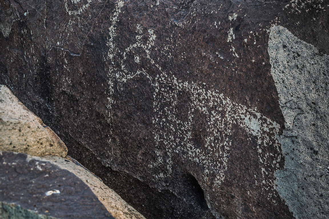 Rock Art Showing Large Mammal at Three Rivers Petroglyph Site