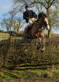 Jimmy Quinn jumping a big hedge at Ladywood - The Cottesmore Hunt at Ladywood