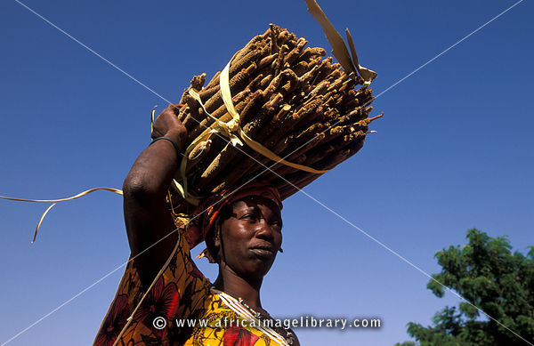 Woman carrying millet, Songo, Dogon Country, Mali