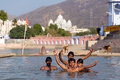 Swimmers in Pushkar Lake, with Gurudwara Singh Sabha Sikh temple in the background, Pushkar, Rajasthan, India