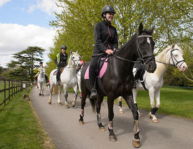 2015 Equestrian Bridies Birthday Bash