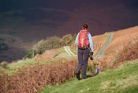 A female hiker and their dog walking through fields of brown bracken in autumn on a sunny day in the English Lake District, UK.