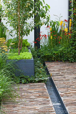 A water rill with stone paving and fruit trees and salad leaves in planters in the 'Food 4 Thought' garden at the RHS Hampton...