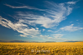 Cirrus clouds above a golden prairie, Antelope Island State Park in the Great Salt Lake, Utah, USA, August, 2008_UT_4357