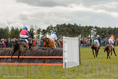The Bruce Farms Northern Point-to-Point Members Race at Balcormo Point-to-Point on 23 Apr 2016.