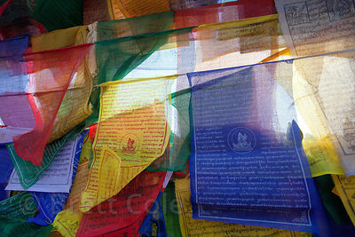 Buddhist prayer flags near Mulagandhakuti Vihara temple in Sarnath, India.