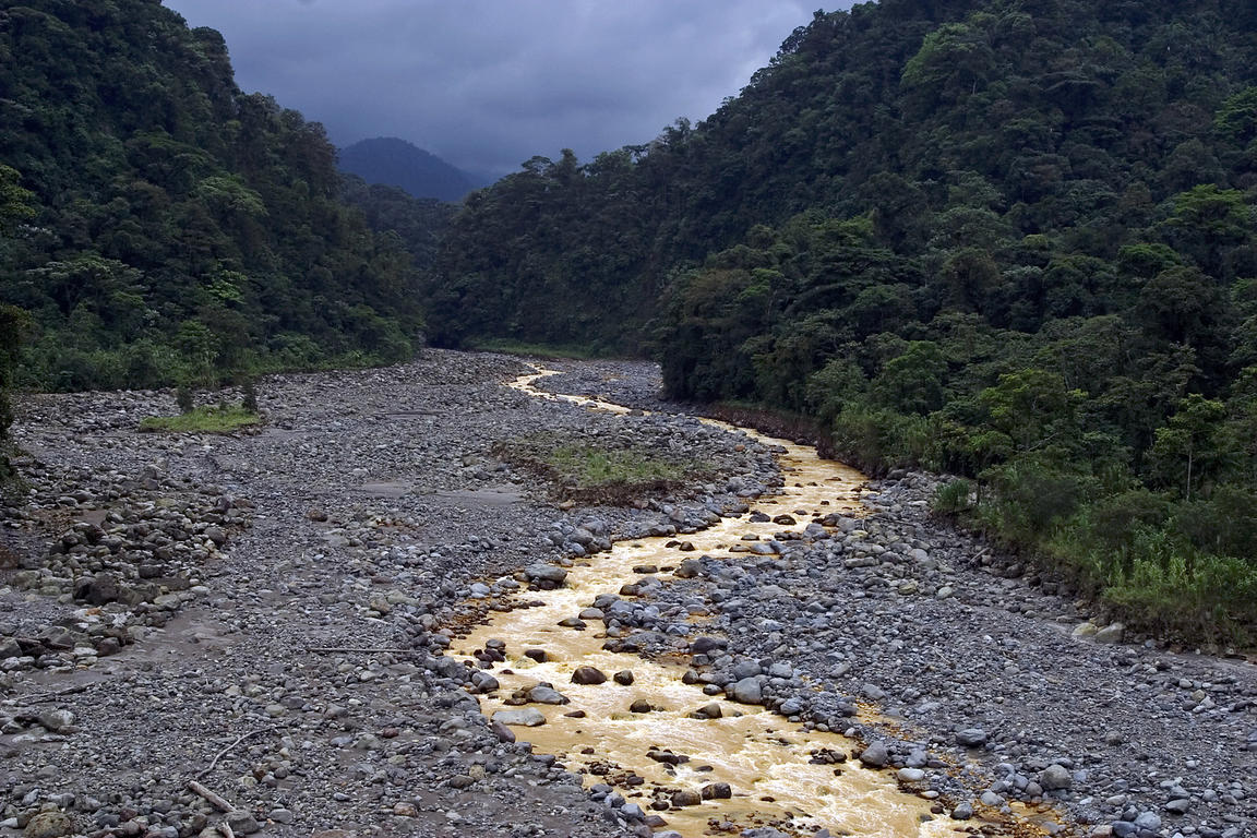 The dramatic muddy brown waters of the Rio Susio (Dirty River) flowing through Braulio Carillo National Park, Costa Rica.