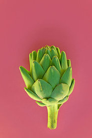 TPG_food_artichoke_3349