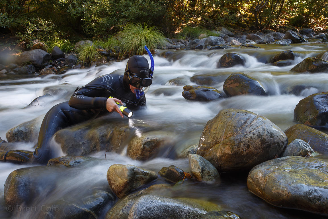 Fish researchers survery the Smith River near Jedidiah Smith Redwoods Park, California