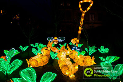 Longleat_Festival_of_Light-70