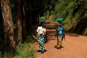 Women carrying baskets on their head walking along the road, Rwanda