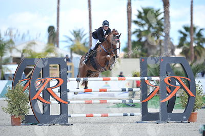 Oliva, Spain - 2018 January 27: Silver tour 1m40 during CSI Mediterranean Equestrian Tour 1..(photo: 1clicphoto.com I Herve B...