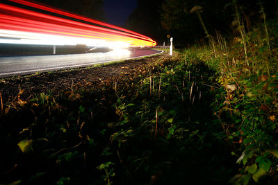 Roadside with light streaks from cars