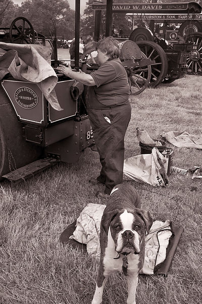 Just checking | Prestwood Steam Rally | July 2014