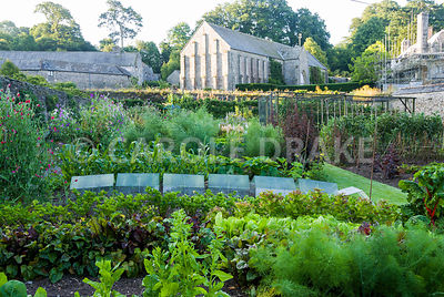 Walled kitchen garden, once part of the abbey, with 13th century Great Barn of Buckland Abbey rising above. The Cider House, ...