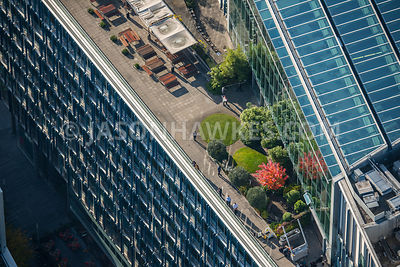 Aerial view of rooftop garden on Blue Fin Bulding, London. 110 Southwark St, London SE1 0SU