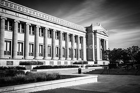 The Field Museum in Chicago in Black and White