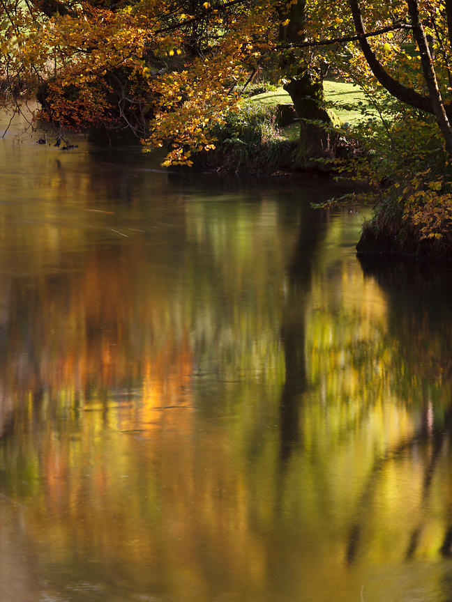 Golden Reflections, Patterdale