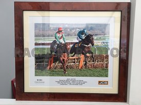 12.40: The JCB Triumph Hurdle Trial