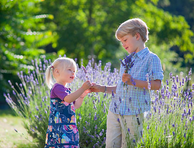 Children picking flowers together