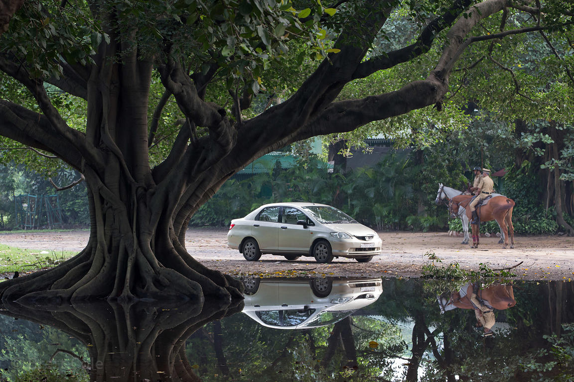 Car and horse reflecting in a pond on the Maidan, Kolkata, India
