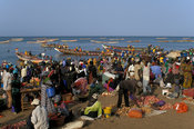 Fish market on the beach with pirogues coming in with fresh fish, Petit Côte, Mbour, Senegal