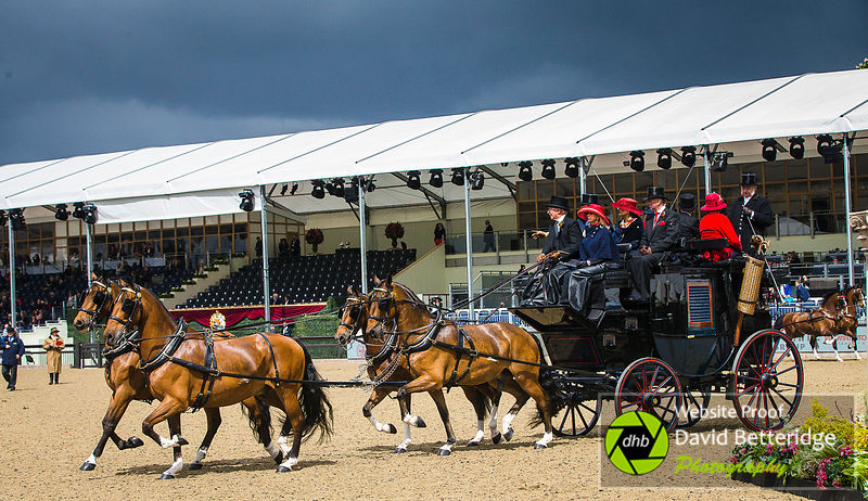 Royal_Windsor_Horse_Show_2017_014