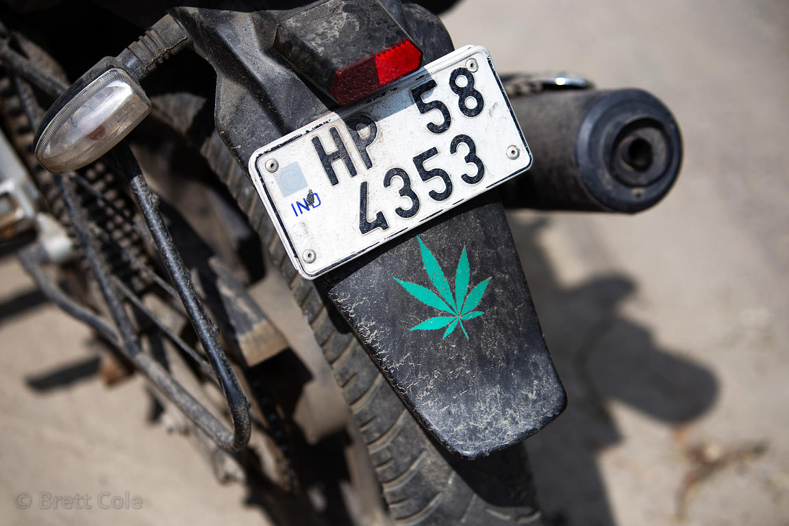Marijuana decal on a motorcycle, Manali, India