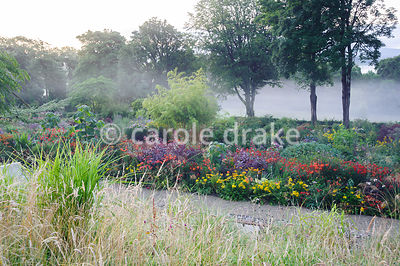 Misty late summer morning at June Blake's garden, viewed from the hillside above colourful beds full