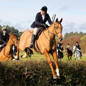 12th November with the Surrey Union Hunt