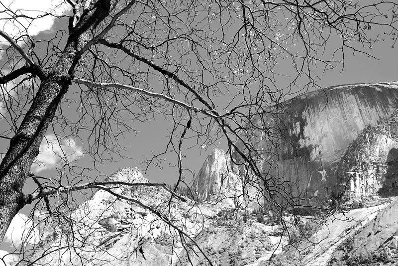 HALF DOME VIEWED FROM MIRROR LAKE AREA YOSEMITE NATIONAL PARK CALIFORNIA BLACK AND WHITE
