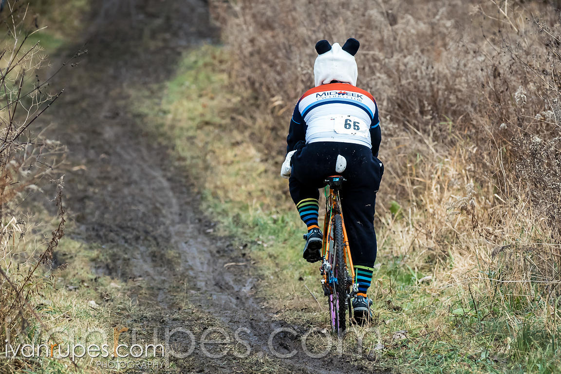 A rider in a panda suit at Subway Cross, CX O-Cup #8; King's Mill Park, Etobicoke, On, November 22, 2015