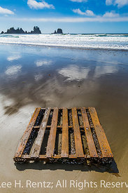 Wooden Pallet Washed up on Shi Shi Beach in Olympic National Park