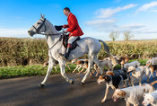 The Cottesmore Hunt at Furze Hill 22/1