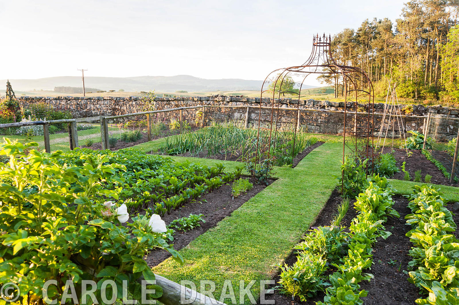 Metal structure in the centre of the vegetable patch. Fowberry Mains Farmhouse, Wooler, Northumberland, UK