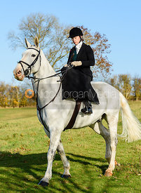 At the meet. The Belvoir Hunt at Debdale Farm 10/11