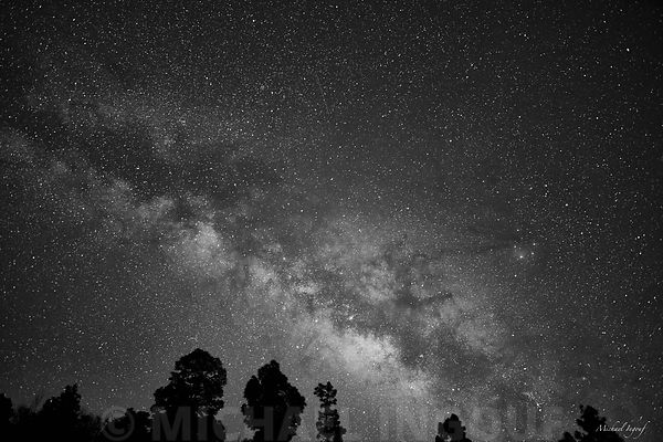 18-08-23_la_palma_garafia_foret_bnw_milkyway_JPEG_Qualité_maximum