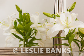 Lillies in Bathroom