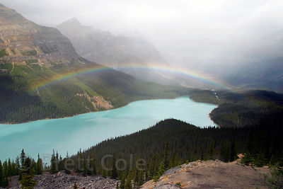Rainbow over Peyto lake on a misty afternoon. Banff NP, Canadian Rockies.