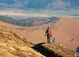 A hiker and their dog walking down the mountain ridge of Scar Crags and Causey Pike in the English Lake District, UK.
