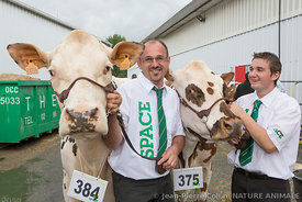 Eleveurs et vaches de race Normande