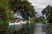 Canoeing on the Zambezi river, Victoria Falls, Zimbabwe