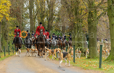 The Belvoir Hunt at Scalford Hall 16/11