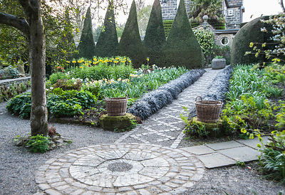 A path of stone setts and gravel in the Canal Garden is framed by black Ophiopogon planiscapus 'Nigrescens' and leads towards...