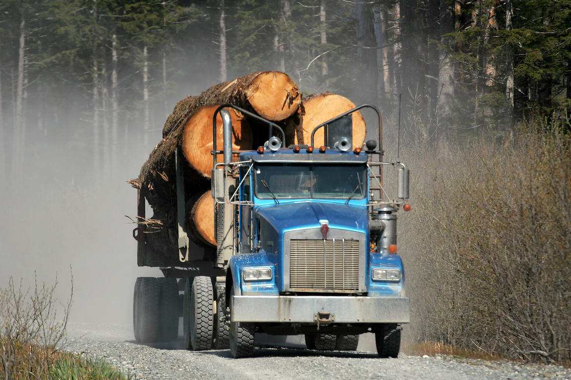 A log truck carries old growth forest in the Chugach National Forest, Alaska