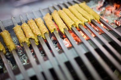 India - Delhi - Kebabs cooking on a griddle at Karim's Restaurant