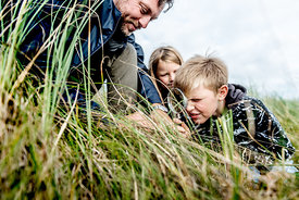 Father and children in the dunes in Thy
