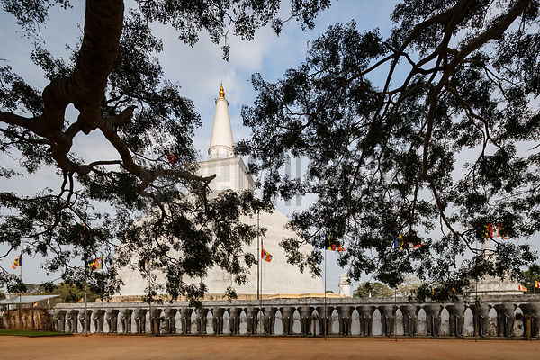 Ruwanweli Maha Seya Stupa through the Branches of a Tree