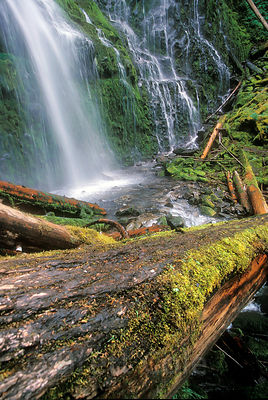 Lower Proxy Falls, Three Sisters Wilderness, Oregon Cascades