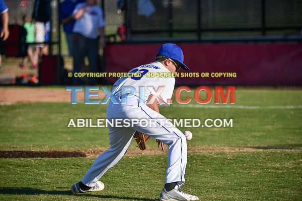 4-3-17_Cubs_v_Dodgers_Dixie_Majors_(RB)-4211